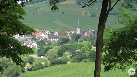 Gewinnerbild des Monats Juli - Blick auf Ebringen - fotografiert von Gundo Klebsattel